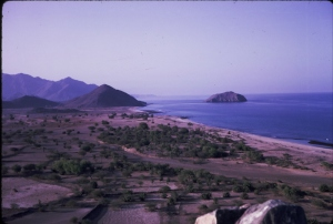 battinah coast Oman. Mostly Indians live in the villages here